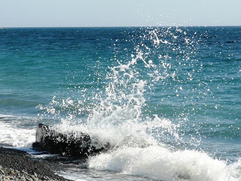 Море. Сукко
